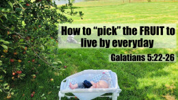 """How to """"pick"""" the Fruit to live by Everyday"""