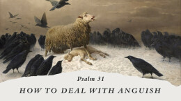 How do deal with Anguish